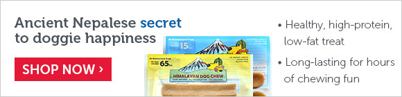 Ancient Nepalese secret to doggie happiness
