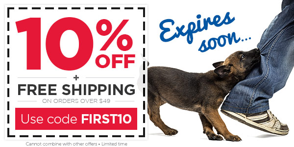 Use this 10% OFF coupon before it expires!