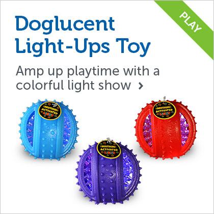 Doglucent Light-Up