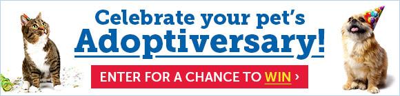 Celebrate your pet's Adoptiversary!