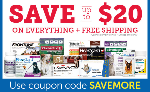 Save up to $20 OFF on EVERYTHING + FREE Shipping