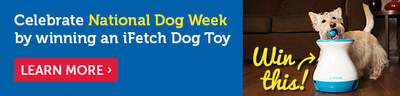 Celebrate National Dog Week by winning an iFetch Dog Toy