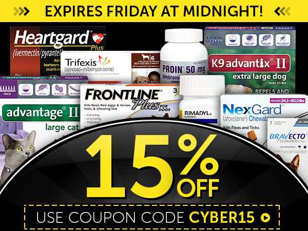 EXCLUSIVE Black Friday Coupon