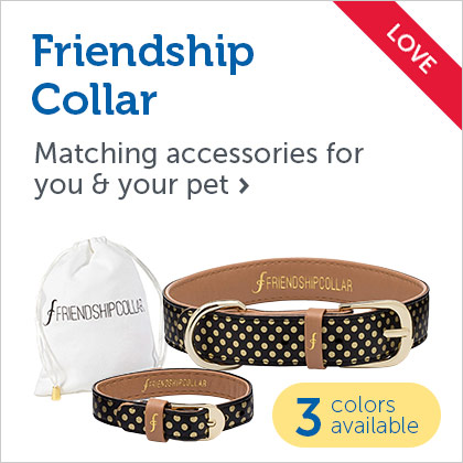 Friendship Collar