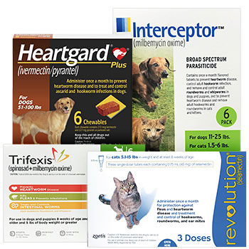 Prevent Heartworms