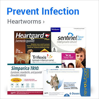 Prevent Infection