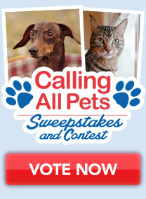 Enter Now - Calling All Pets Sweepstakes and Contest