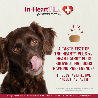 Tri-Heart Plus - Generic to Heartgard Plus 6pk Brown 51-100 lbs Thumbnail Image 1