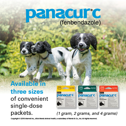 Panacur C Canine Dewormer Three 1 Gram Packages Thumbnail Image 3