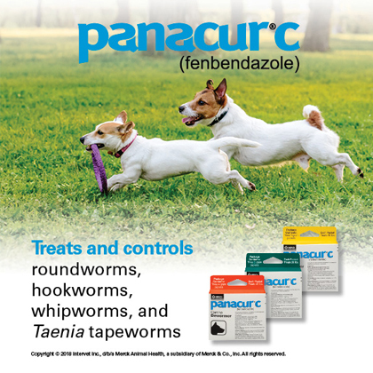 Panacur C Canine Dewormer Three 1 Gram Packages Thumbnail Image 4