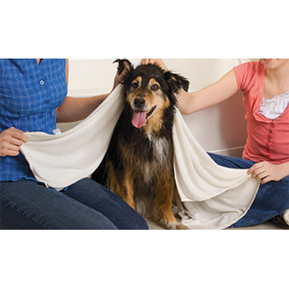 Rinse Ace Super Absorbent Microfiber Pet Towel Thumbnail Image 1