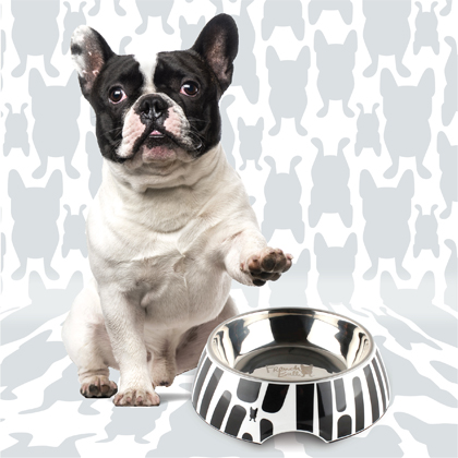 French Bull 2IN1 Pet Bowl Ziggy 12 oz Thumbnail Image 2