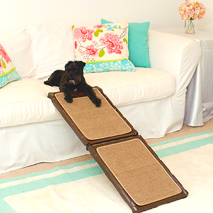 Gen7Pets Indoor-Carpet Mini Ramp