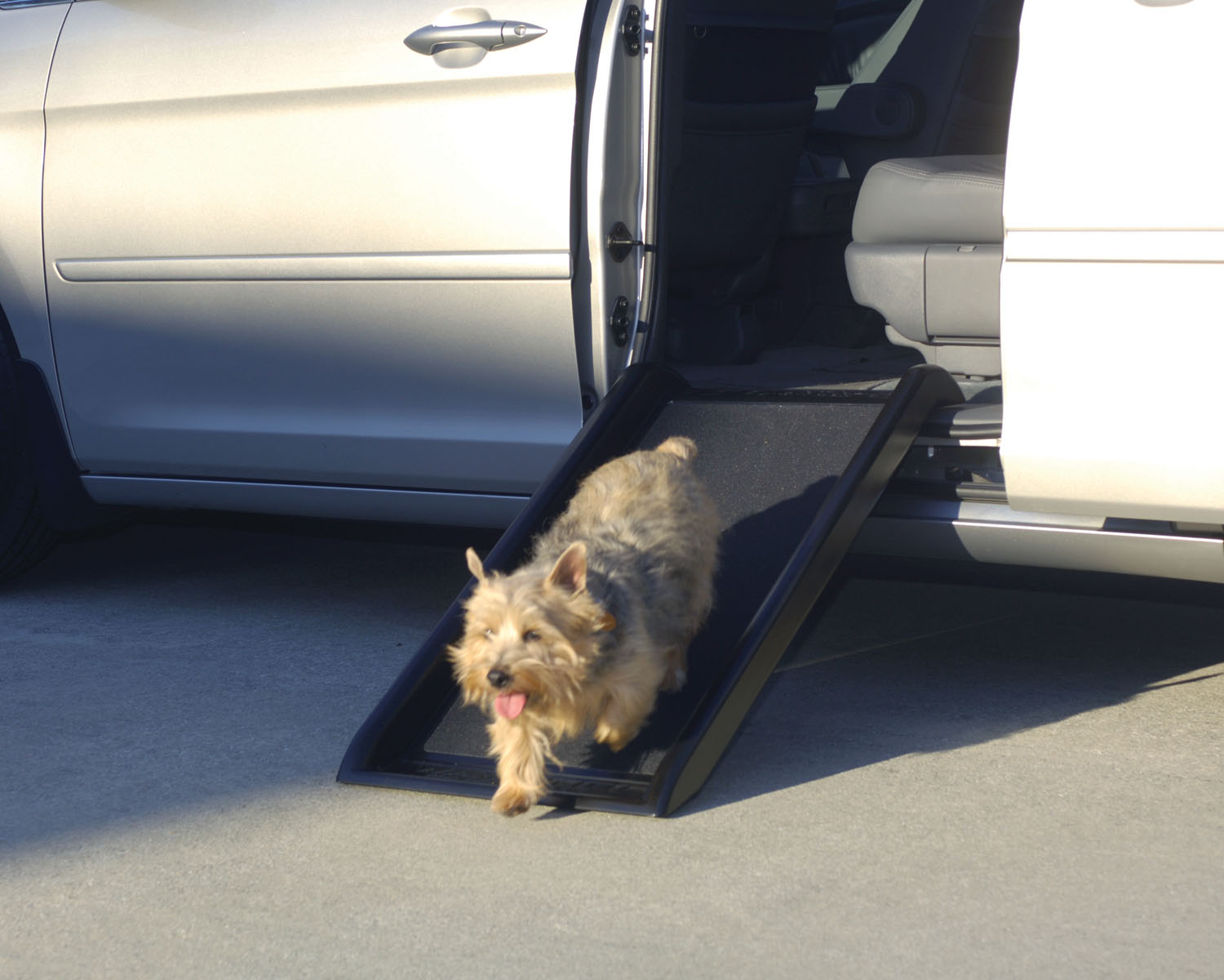 Solvit Mr. Herzher's Smart Ramps for Pets Junior Thumbnail Image 1