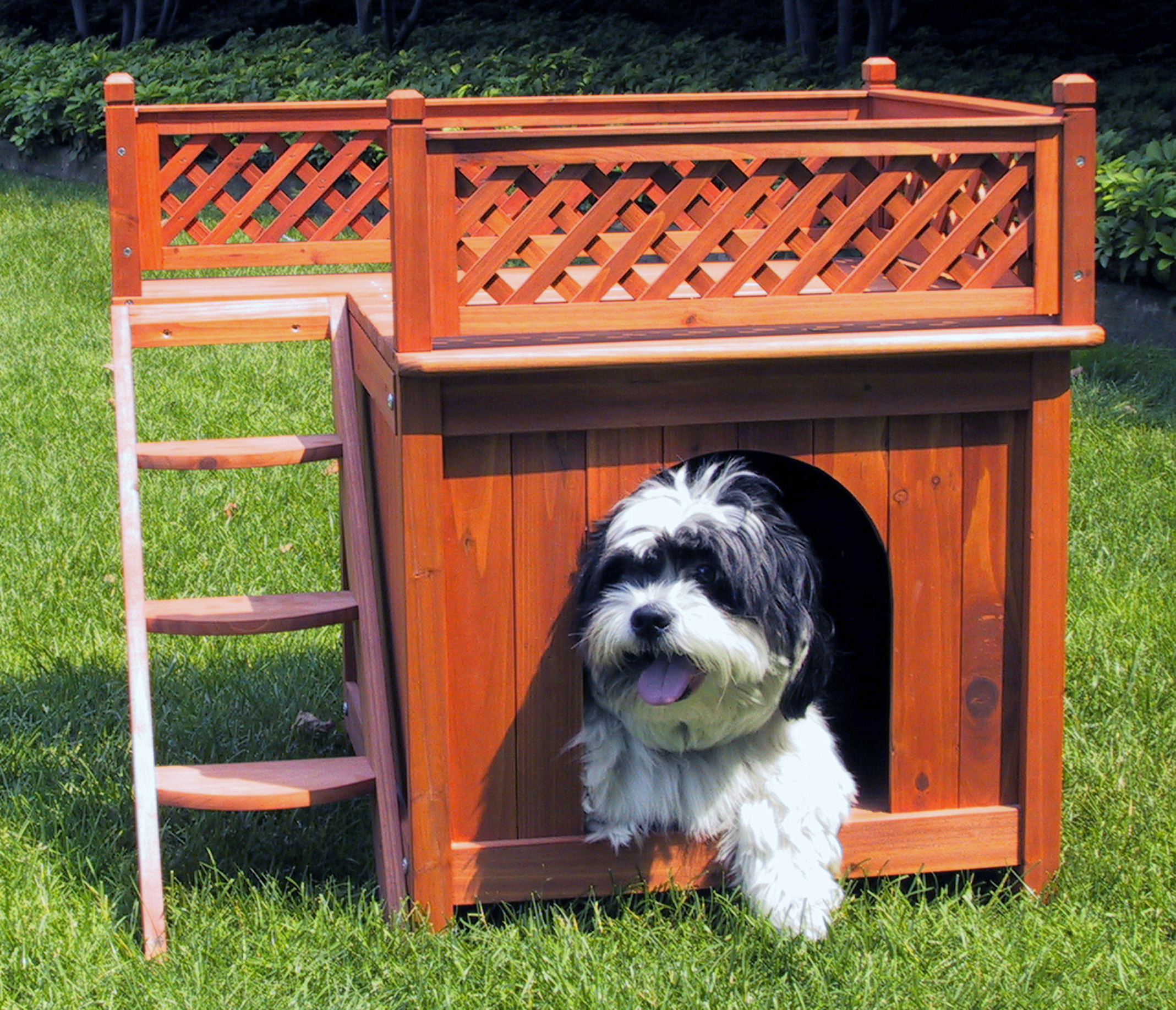 Room with a View Dog House Thumbnail Image 1
