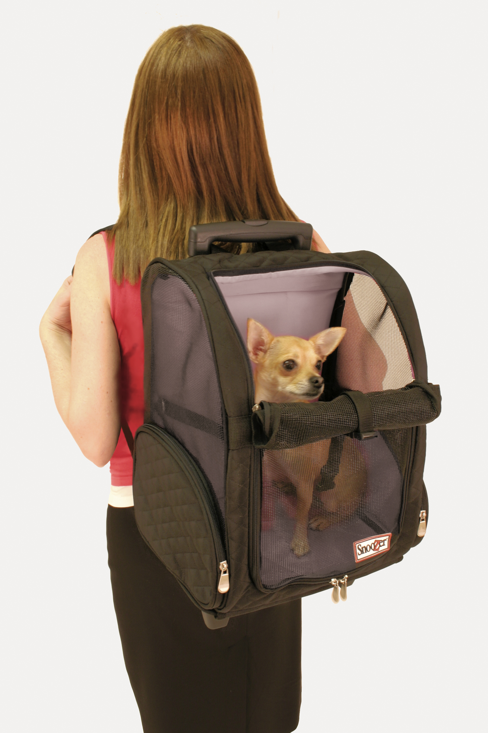 Roll Around Travel Pet Carrier - Med Black/grey Thumbnail Image 1