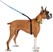 ThunderLeash Large -  For dogs over 25 lbs.
