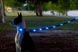 Dog-e Glow LED Collar - Large