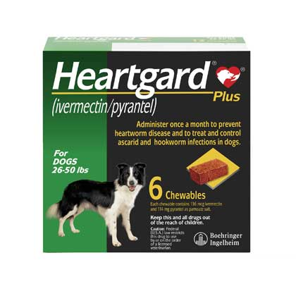 Heartgard Plus Chewables 6pk Green 26-50 lbs