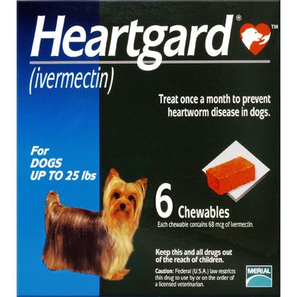 Dog Heartgard Chewables 6pk Blue 1-25 lbs