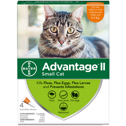 Image of Advantage II 4pk Cat 5-9 lbs by BAYER