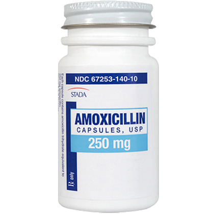 Amoxicillin Antibiotic For Dogs Cats 1800petmeds