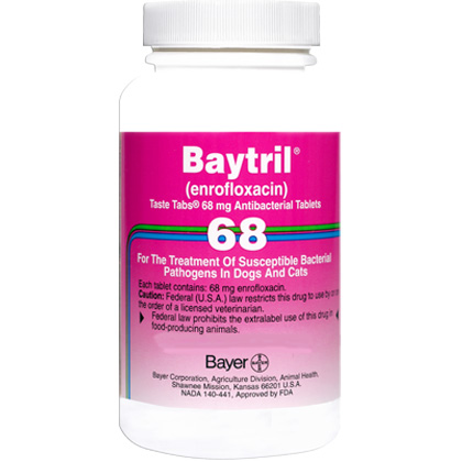 Baytril Taste Tabs (Click for Larger Image)
