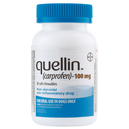 Quellin Carprofen Soft Chew - Generic to Rimadyl 100 mg chewables 30 ct