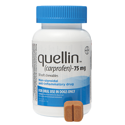 Quellin Carprofen Soft Chew - Generic to Rimadyl 75 mg chewables 180 ct