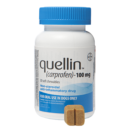 Quellin Carprofen Soft Chew - Generic to Rimadyl 100 mg chewables 180 ct by BAYER
