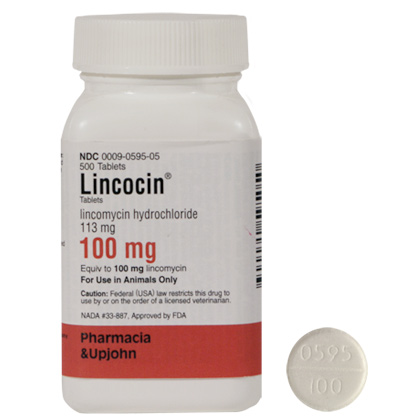 Lincocin (Click for Larger Image)