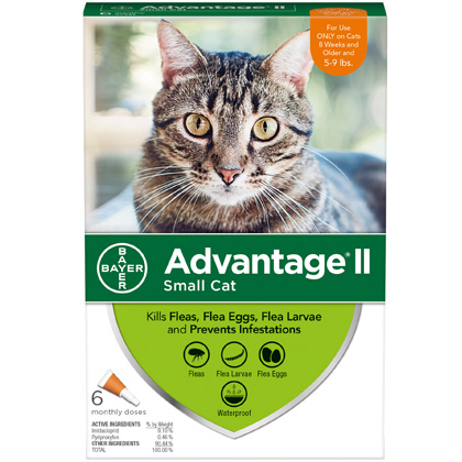 Advantage II 6pk Cat 5-9 lbs by BAYER