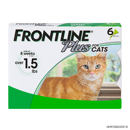 Frontline Plus 6pk Cats Kittens