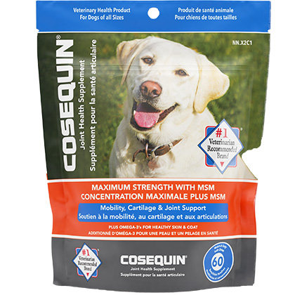 Cosequin Soft Chews with MSM (Click for Larger Image)