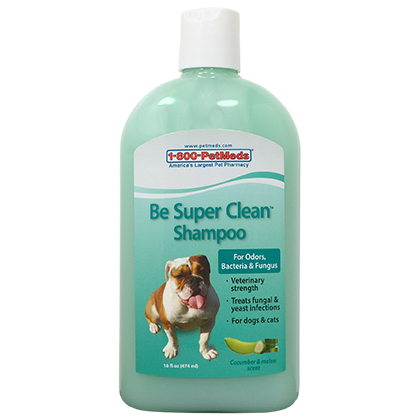 Be Super Clean Shampoo (Click for Larger Image)