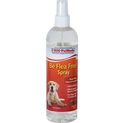 Be Flea Free Spray (Click for Larger Image)