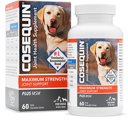 Cosequin DS Chewables Plus MSM 60 ct