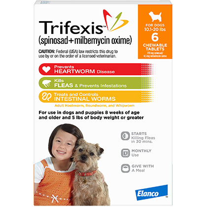 photograph regarding Trifexis Printable Coupon named Trifexis 6pk Pet 10.1-20 pounds