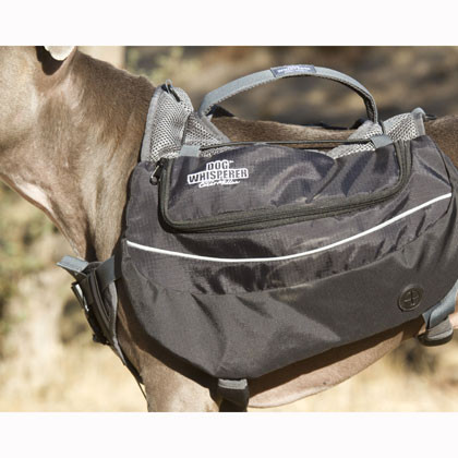 Cesar Millan Dog Backpack (Click for Larger Image)