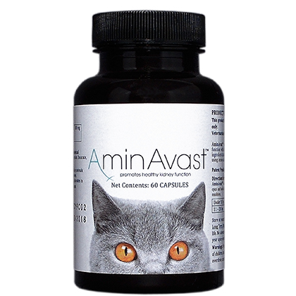 Urinary Tract & Kidneys Medication, AminAvast 300 mg capsules for Cats and Small Dogs 60 ct by BioHealth