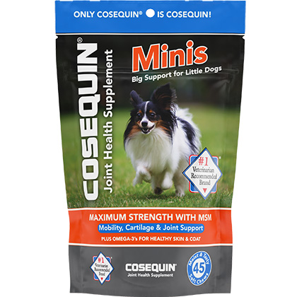 Cosequin Minis Soft Chews Maximum Strength with MSM 45 ct