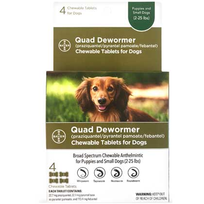 Wormers Medication, Bayer Quad Dewormer Chewable Tablets for Dogs Puppies and Small Dogs 4 ct by 1-800-PetMeds