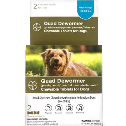 Bayer Quad Dewormer Chewable Tablets for Dogs Medium Dogs 2 ct