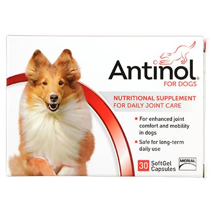 Image of Antinol Dog SoftGel Cap 30 ct by 1-800-PetMeds