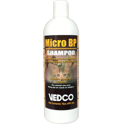 Micro BP Shampoo (Click for Larger Image)