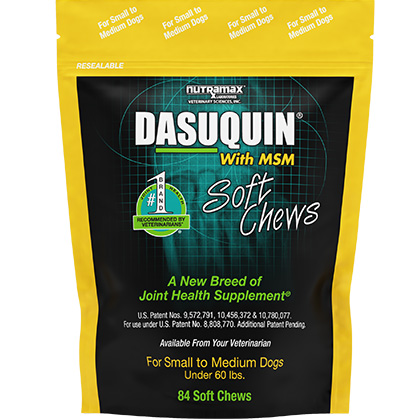 Dasuquin with MSM Soft Chews for Dogs (Click for Larger Image)