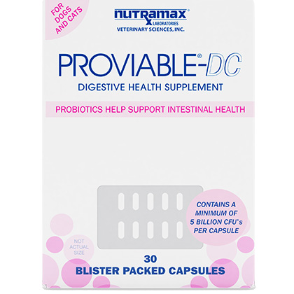 Proviable Capsules 30 ct by 1-800-PetMeds