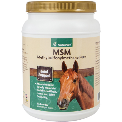 MSM Pure Powder (Click for Larger Image)