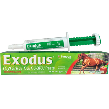 Exodus Paste (Click for Larger Image)