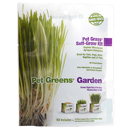 Bell Rock Growers Organic Self Grow Pet Greens (Click for Larger Image)